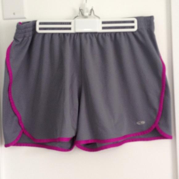 Grey Champion Shorts W/ Purple Stripes